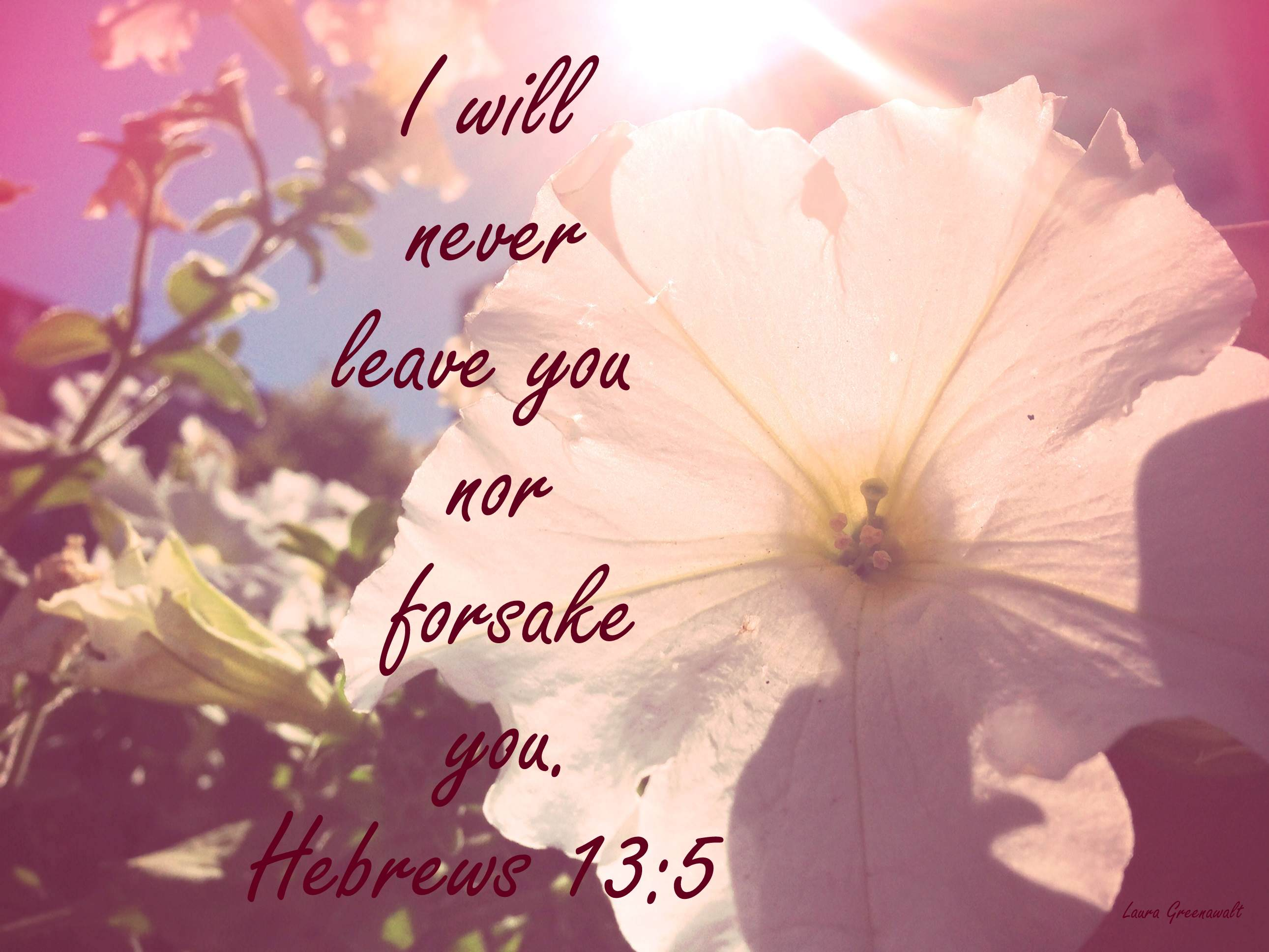 Image result for i'll never leave you or forsake you