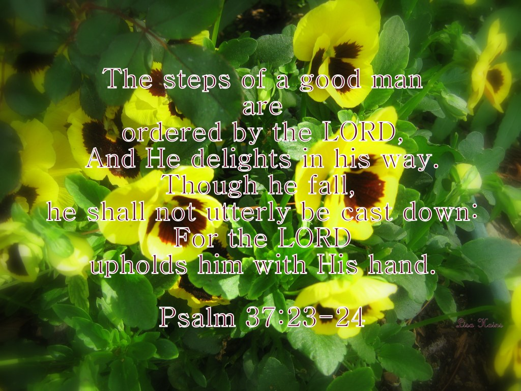 Pansies edited Psalm 37 23-24